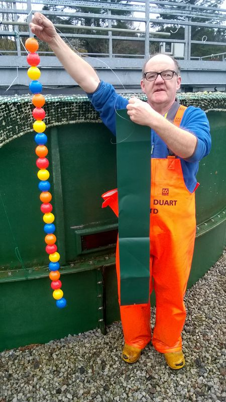 Loch Duart Salmon Welfare